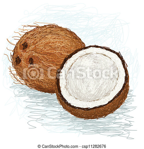 Closeup Illustration Of A Half And Whole Coconut