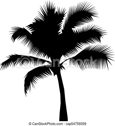Coconut Palm Tree Black Silhouette Isolated On A White Background