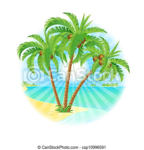 Coconut palm trees - csp10996591