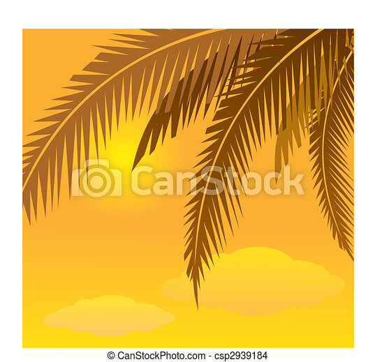 coconut tree - csp2939184