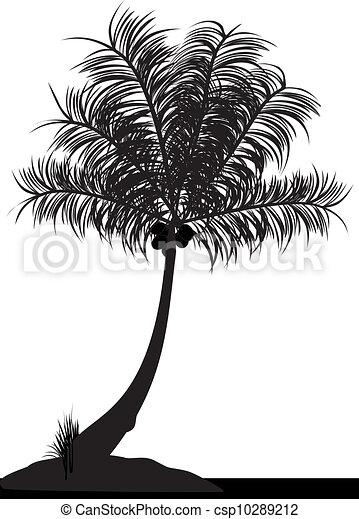 coconut tree - csp10289212