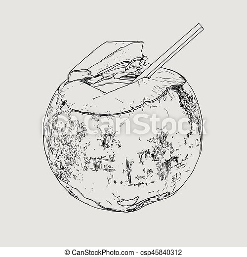 Coconut Water Drink Green Vector Hand Drawn Sketch Line Art Highly Detail