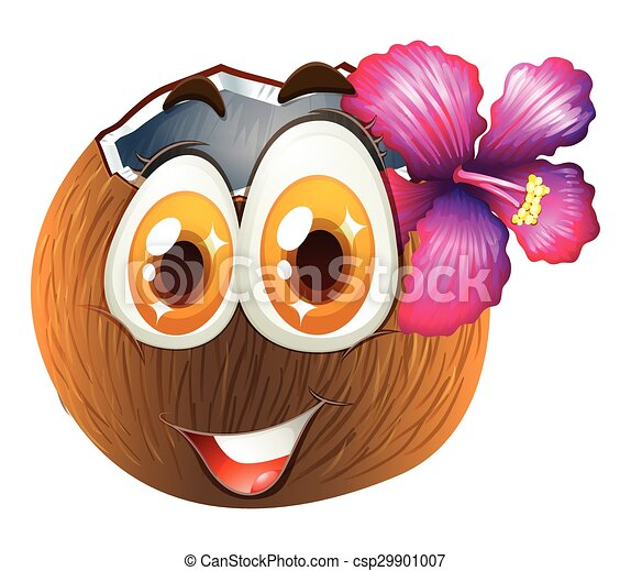 Coconut with happy face - csp29901007