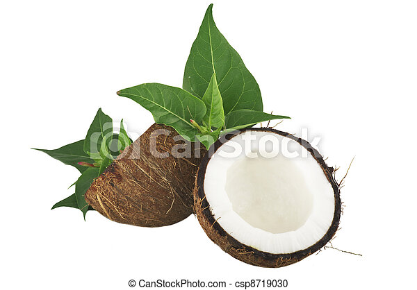 Coconut with leaves on a white background - csp8719030