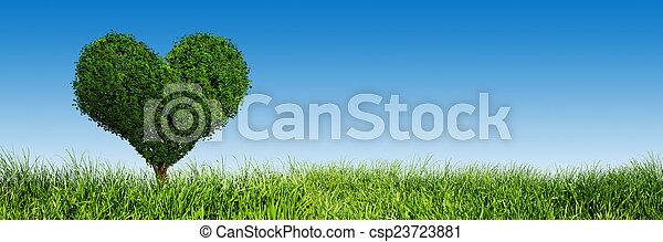 coeur, amour, panorama, banner., arbre, symbole, forme, vert, field., herbe - csp23723881