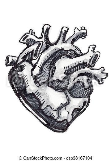 Coeur Dessin Humain Encre