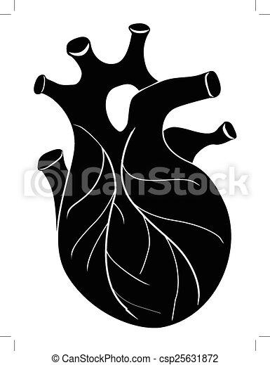 coeur, humain - csp25631872