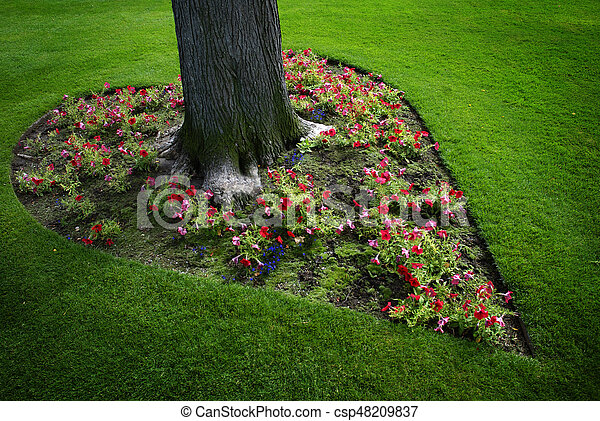 Coeur, jardin fleur, formé, arbre, autour de. Coeur, jardin, formé ...