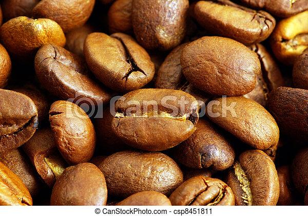 coffe beans - csp8451811