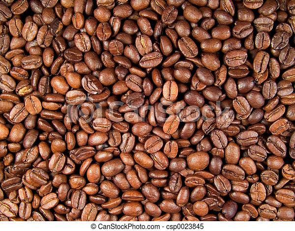Coffee Beans - csp0023845