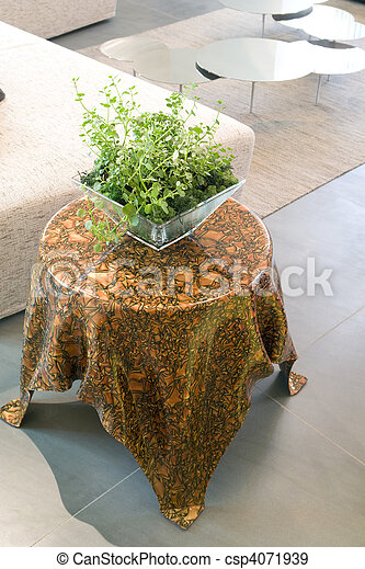 coffee table with plant on it - csp4071939