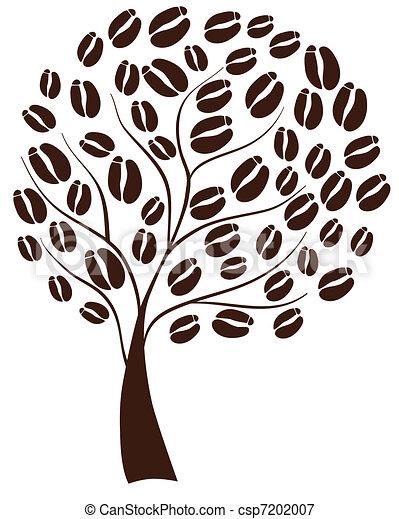 Coffee tree - csp7202007