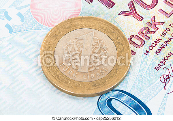 Coin and Banknote - csp25256212