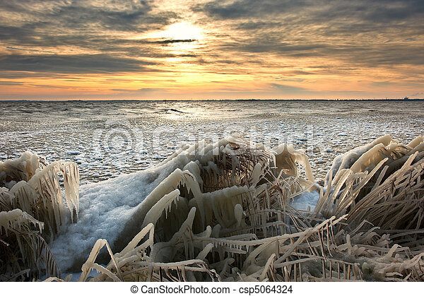 cold winter sunrise  landscape with reed covered in ice - csp5064324