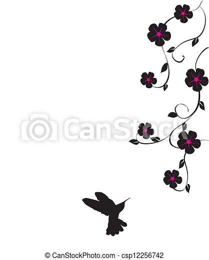 colibrí - csp12256742