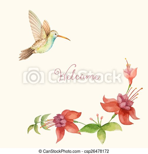 Colibrís Stock Photo Images. 6.843 Colibrís imagenes libres de ...