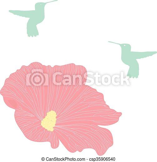 Colibri Silhouettes Sammlung Vektor Kolibri Vogel Colibri