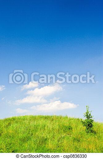 colina verde - csp0836330