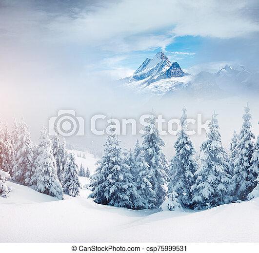 collage., alpes, emplacement, europe., créatif, suisse, suisse - csp75999531