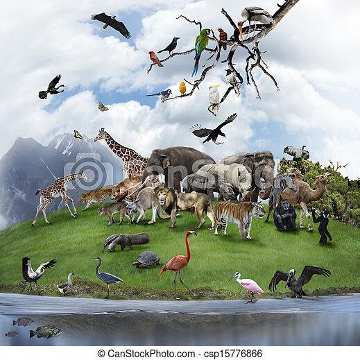 Un collage de animales y aves salvajes - csp15776866