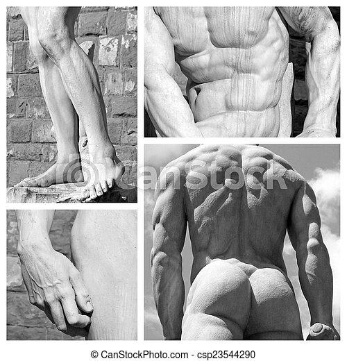 Collage de arte corporal humano: imágenes de esculturas David de Michelang - csp23544290