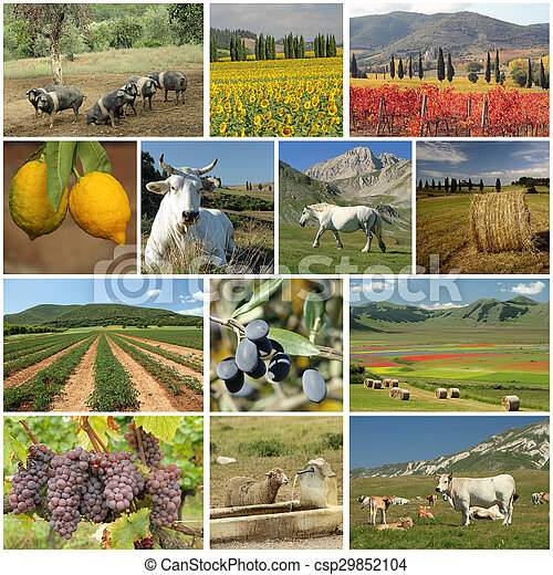 collage, industrie, agriculture, italien - csp29852104