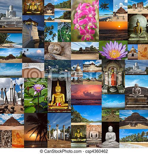 Collage of Sri Lanka images  - csp4360462