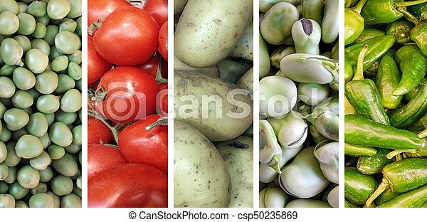 collage of vegetables - csp50235869