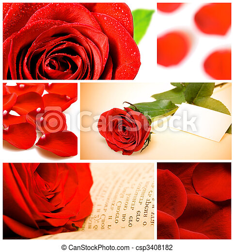 collage, rozen, gevarieerd, rood - csp3408182