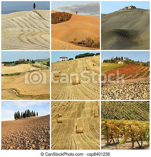 collage, scenico, toscano, paesaggio, paese - csp8401236