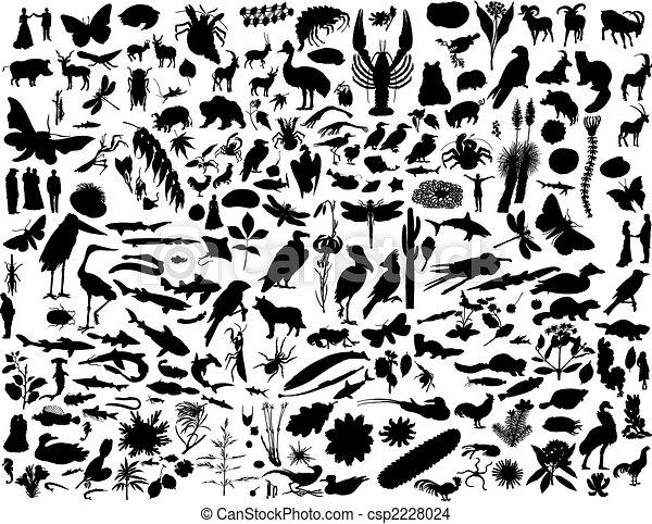 collage silhouettes - csp2228024