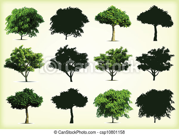 Collection green trees. Vector illustration - csp10801158