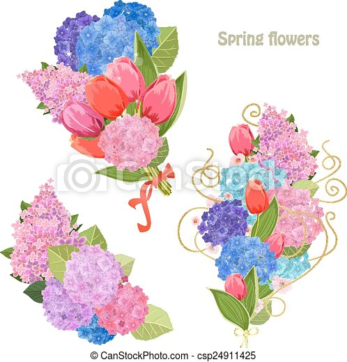 collection of beautiful spring flowers - csp24911425