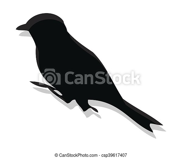 Collection of Bird Silhouettes - csp39617407