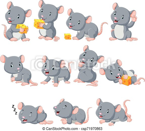 Collection of cute mouse with various posing - csp71970863
