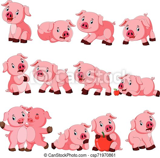 Collection of cute pig with various posing - csp71970861