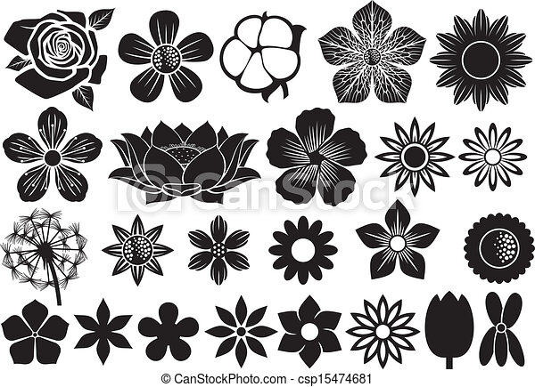 collection of flowers - csp15474681