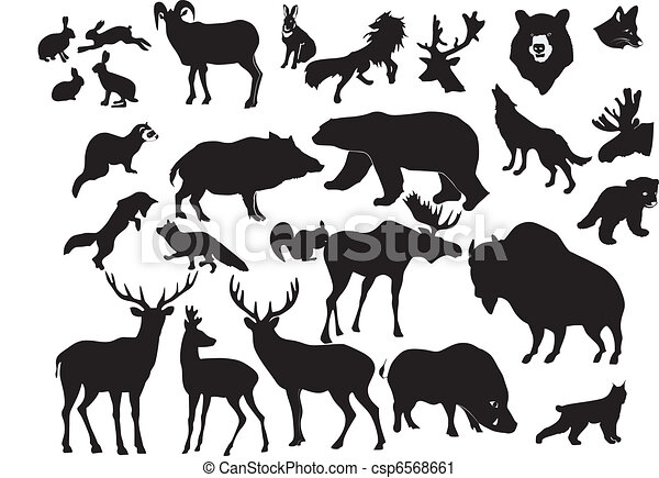 Easy Line Drawings Of Animals : Collection of forest animals vector clip art search illustration