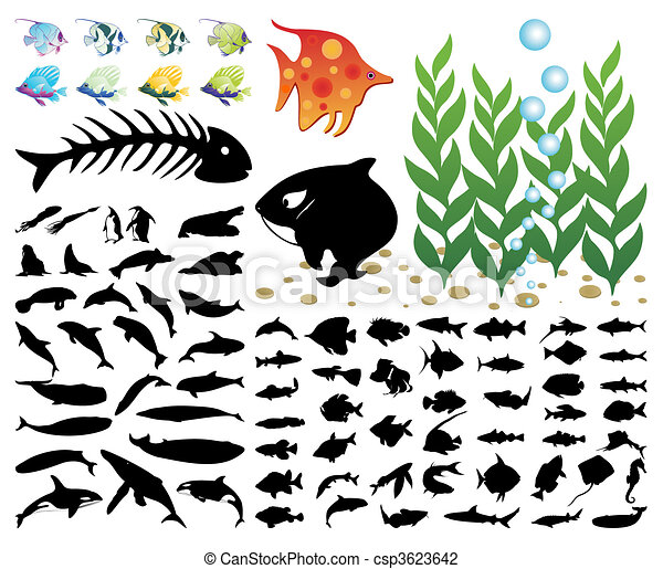 Collection of images on a sea theme. A vector illustration - csp3623642
