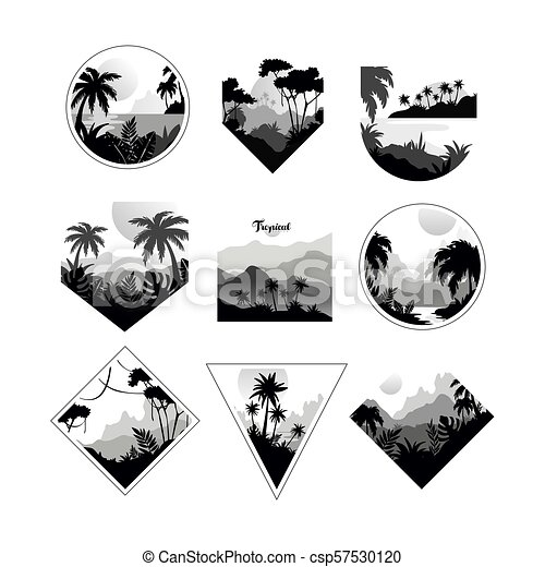 Collection of monochrome geometric tropical logo, badges with tropical trees, retro style design for banner, poster, placard, brochure vector Illustrations on a white background - csp57530120