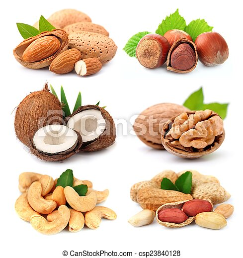 Collection of nuts - csp23840128