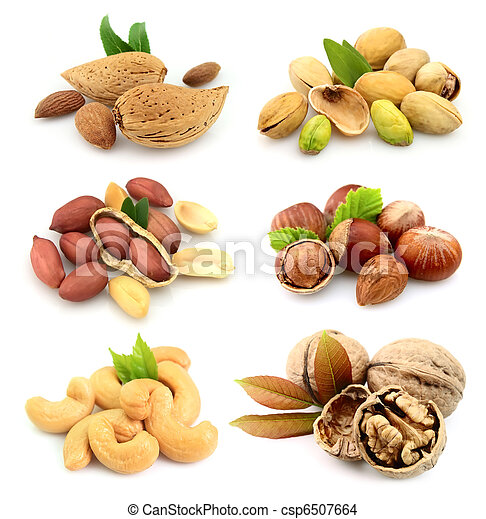 Collection of nuts - csp6507664