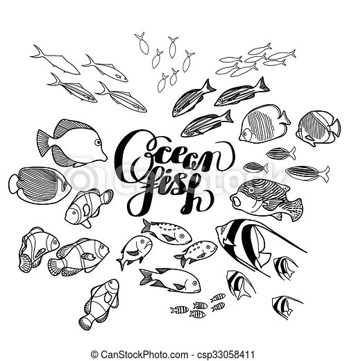 Collection Of Ocean Fish Drawn In Line Art Style Isolated On White