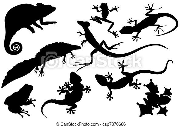 Collection of reptiles - csp7370666