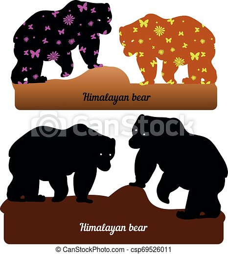 Collection of walking bear, silhouette and silhouette with pattern for design (brown and black), on a white background - csp69526011