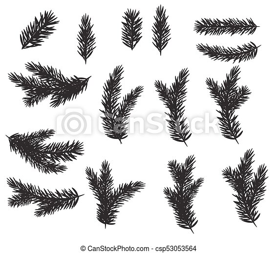 Christmas Branch Vector.Collection Set Of Realistic Fir Branches Silhouette For Christmas Tree Pine Vector Illustration