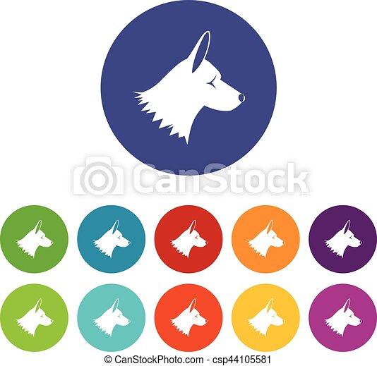 collie, jogo, cão, ícones - csp44105581