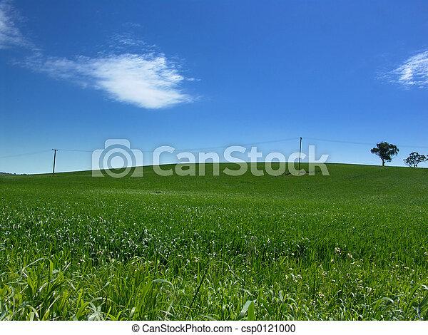colline verte - csp0121000