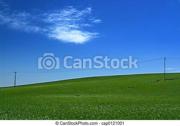 colline verte - csp0121001