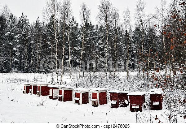 colmeias, inverno, vermelho - csp12478025